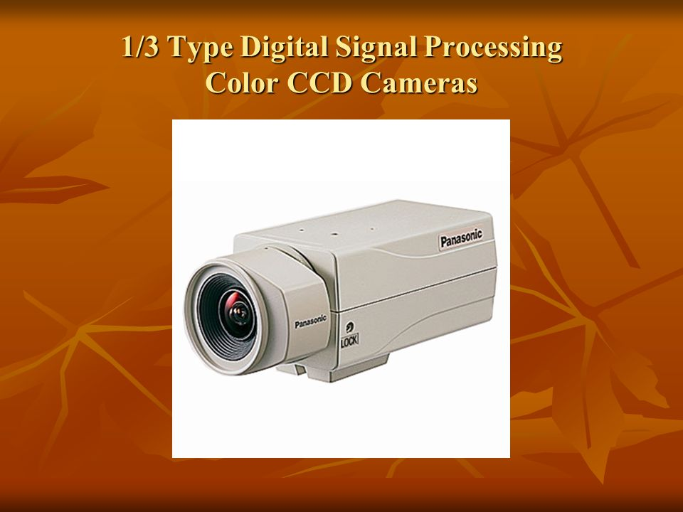 1/3 Type Digital Signal Processing Color CCD Cameras
