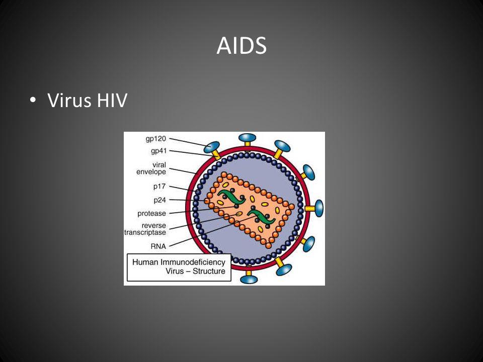 Th(CD4+)--HIV