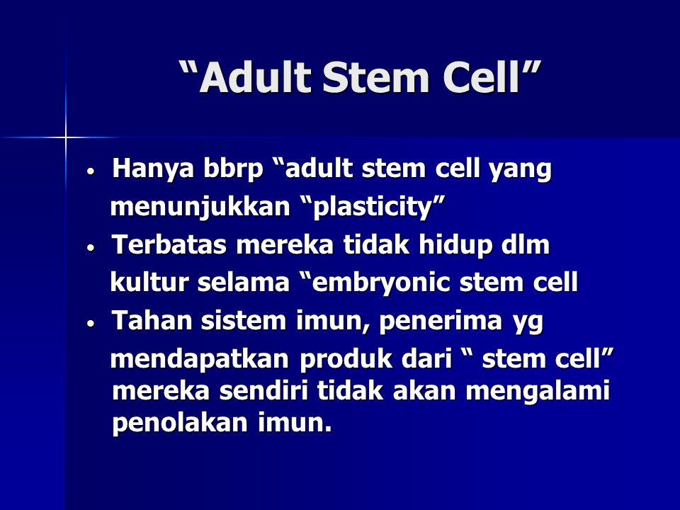 """""""Adult Stem Cell"""" • Hanya bbrp """"adult stem cell yang menunjukkan """"plasticity"""" menunjukkan """"plasticity"""" • Terbatas mereka tidak hidup dlm kultur selama"""