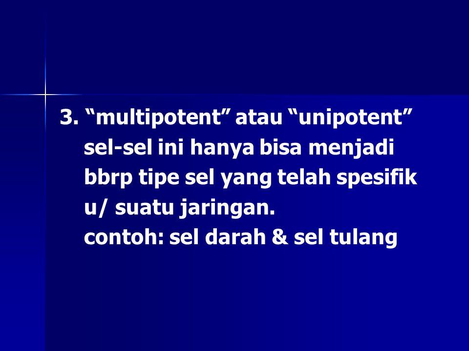 """3. """"multipotent"""" atau """"unipotent"""" sel-sel ini hanya bisa menjadi bbrp tipe sel yang telah spesifik u/ suatu jaringan. contoh: sel darah & sel tulang"""