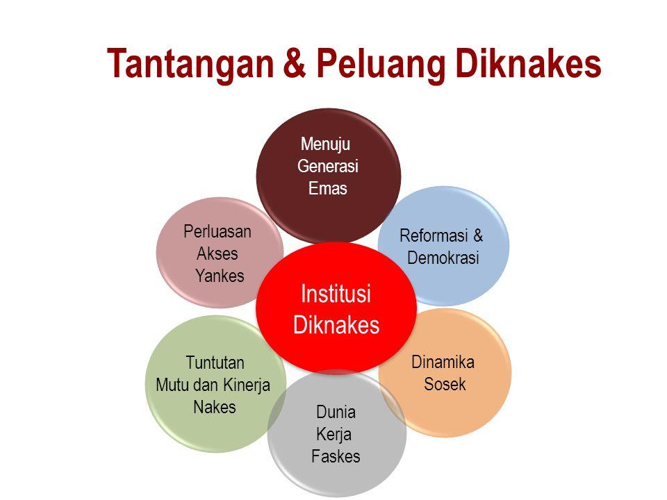 Dua Hasil Kajian 1.Survey Kualitas Pendidikan Keperawatan & Kebidanan di Indonesia (WHO) Tahun 2011-2012 2.Kajian Implementasi Kurikulum D-III Kebidanan (GAVI) Tahun 2013