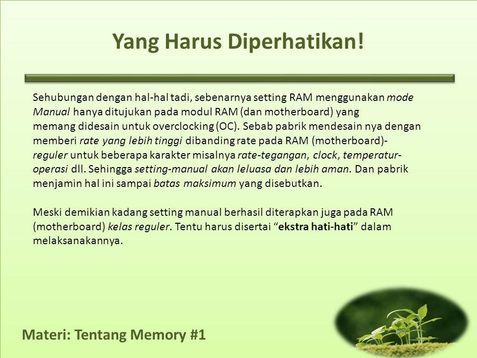 Materi: Tentang Memory #1 Yang Harus Diperhatikan! Sehubungan dengan hal-hal tadi, sebenarnya setting RAM menggunakan mode Manual hanya ditujukan pada