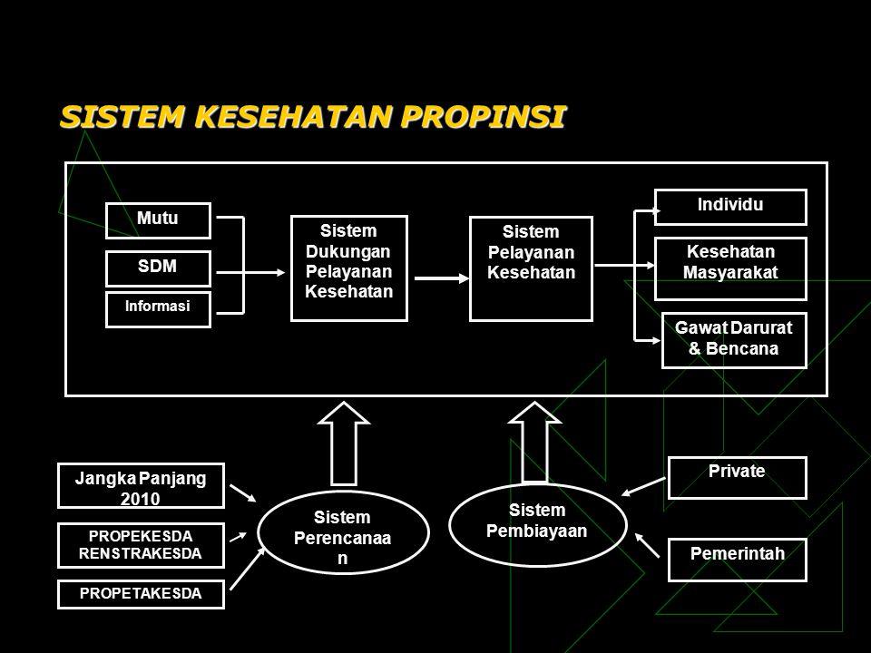 SISTEM KESEHATAN PROPINSI Mutu SDM Informasi Sistem Dukungan Pelayanan Kesehatan Sistem Pelayanan Kesehatan Individu Kesehatan Masyarakat Gawat Darura