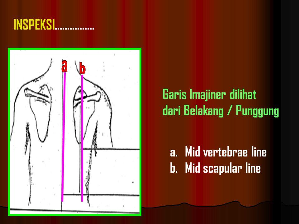 a.Mid vertebrae line b.Mid scapular line Garis Imajiner dilihat dari Belakang / Punggung INSPEKSI................