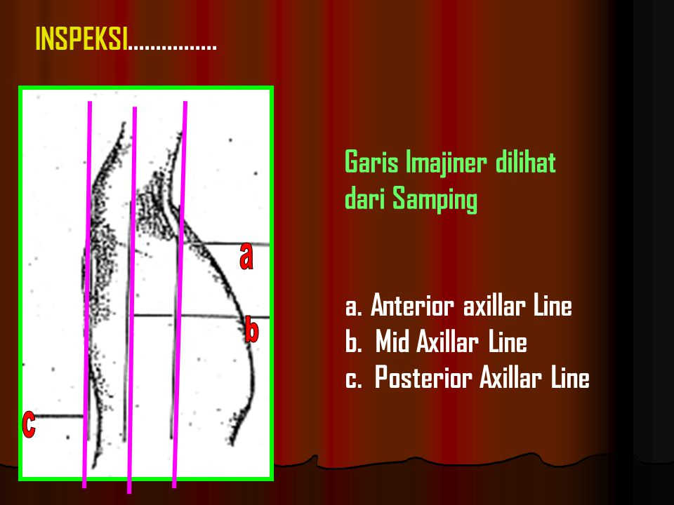 a.Anterior axillar Line b.Mid Axillar Line c. Posterior Axillar Line INSPEKSI................