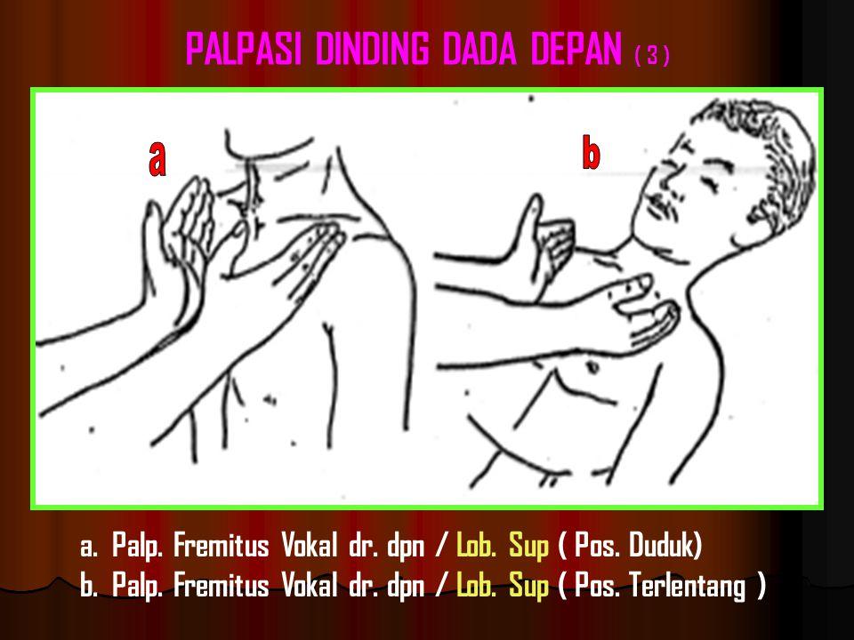 a.Palp.Fremitus Vokal dr. dpn / Lob. Sup ( Pos. Duduk) b.Palp.