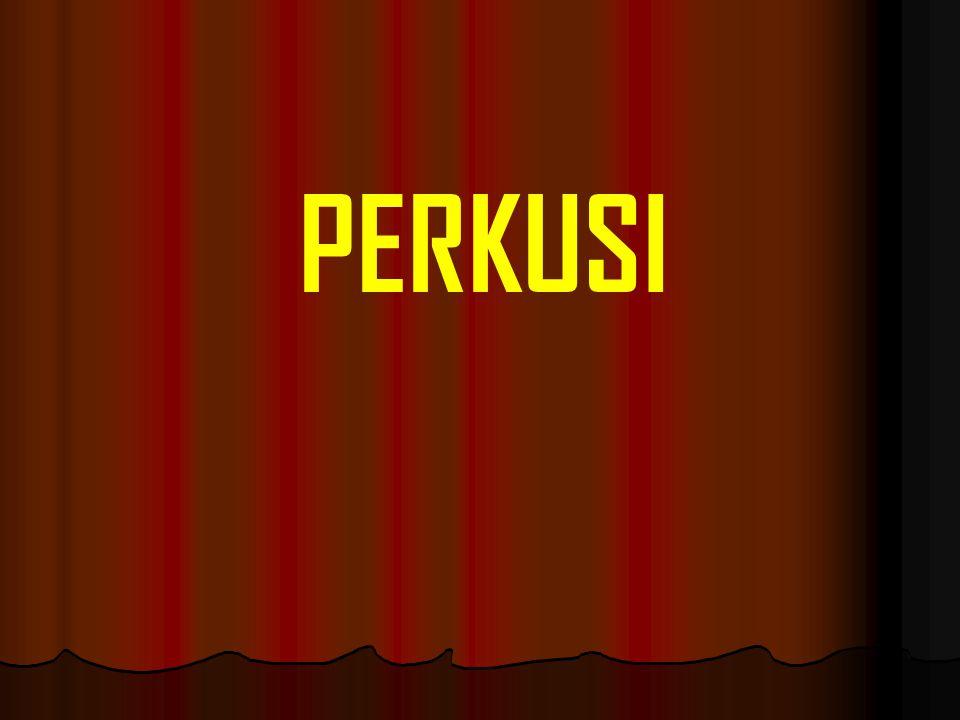 PERKUSI