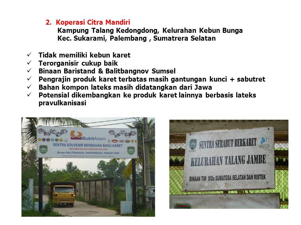 2. Koperasi Citra Mandiri Kampung Talang Kedongdong, Kelurahan Kebun Bunga Kec. Sukarami, Palembang, Sumatrera Selatan  Tidak memiliki kebun karet 