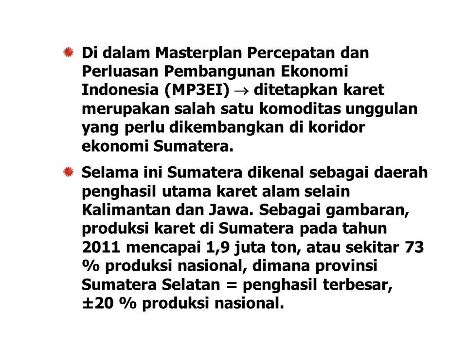 Di dalam Masterplan Percepatan dan Perluasan Pembangunan Ekonomi Indonesia (MP3EI)  ditetapkan karet merupakan salah satu komoditas unggulan yang per