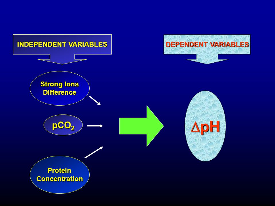 Strong Ions Difference pCO 2 ProteinConcentration  pH INDEPENDENT VARIABLES DEPENDENT VARIABLES