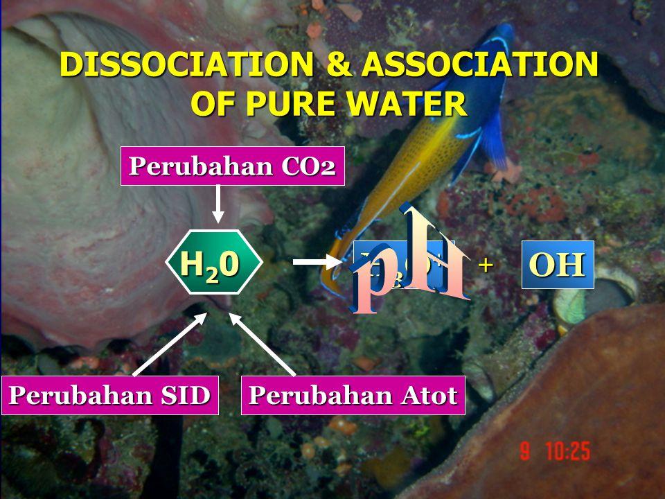 H3O+H3O+H3O+H3O+ + OH Perubahan SID Perubahan Atot Perubahan CO2 H20H20H20H20 DISSOCIATION & ASSOCIATION OF PURE WATER