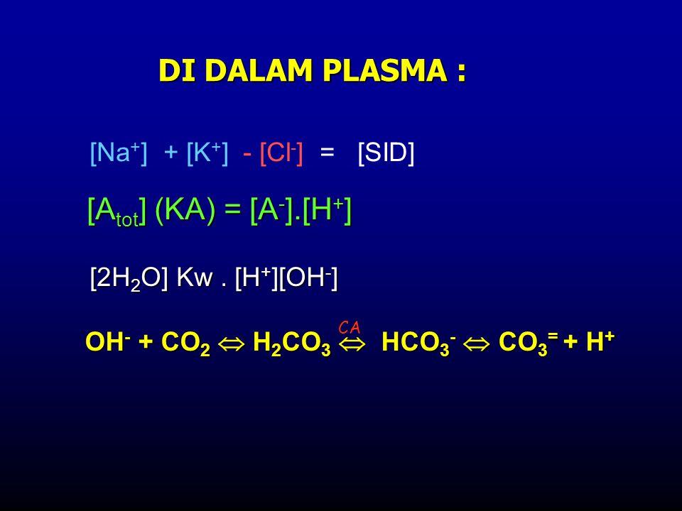 DI DALAM PLASMA : OH - + CO 2  H 2 CO 3  HCO 3 -  CO 3 = + H + CA [A tot ] (KA) = [A - ].[H + ] [Na + ] + [K + ] - [Cl - ] = [SID] [2H 2 O] Kw. [H