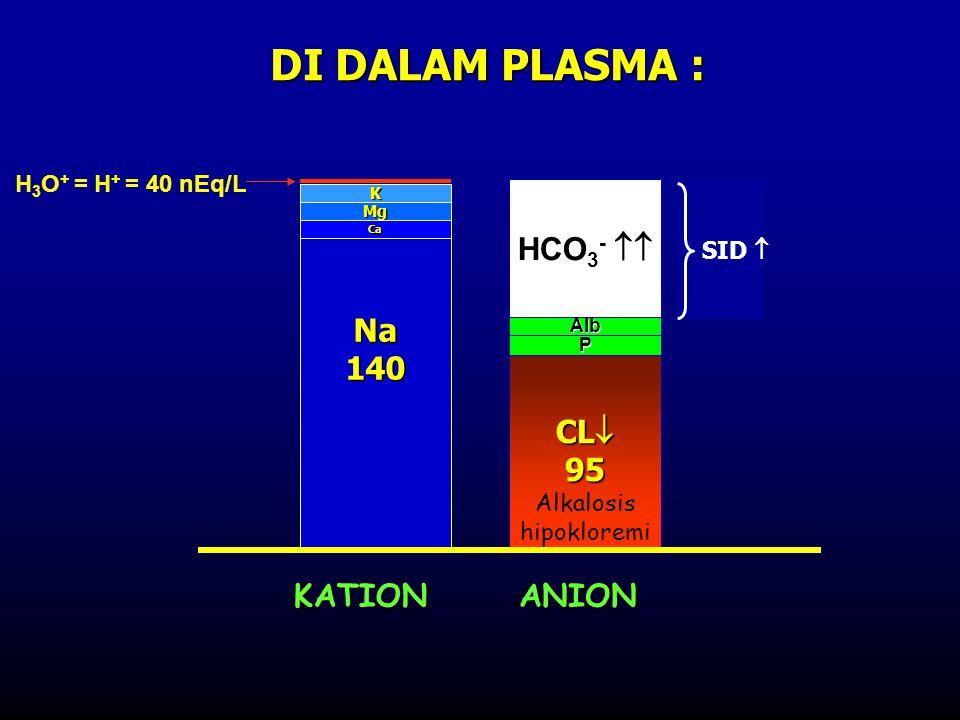 Na140K Mg Ca Cl102 P Alb HCO 3 = 24 Cl115 P Alb HCO 3 -  Asidosis hiperkloremi SID n SID  Cl102 Laktat/keto=UA Keto/laktat asidosis CL  95 P Alb S