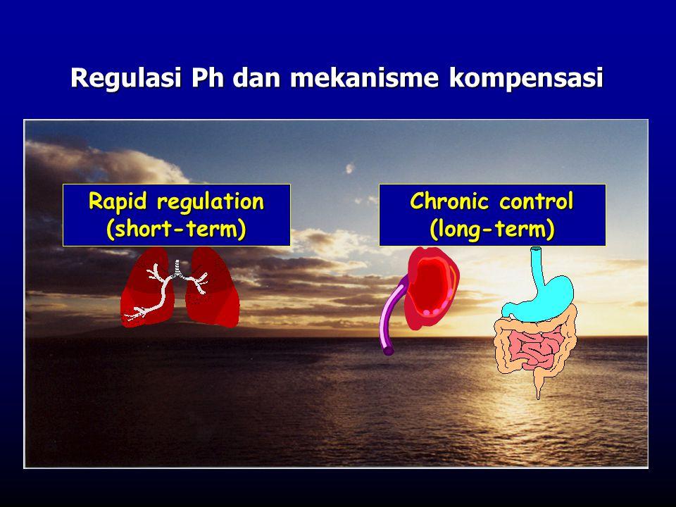 Regulasi Ph dan mekanisme kompensasi Chronic control (long-term) Rapid regulation (short-term)