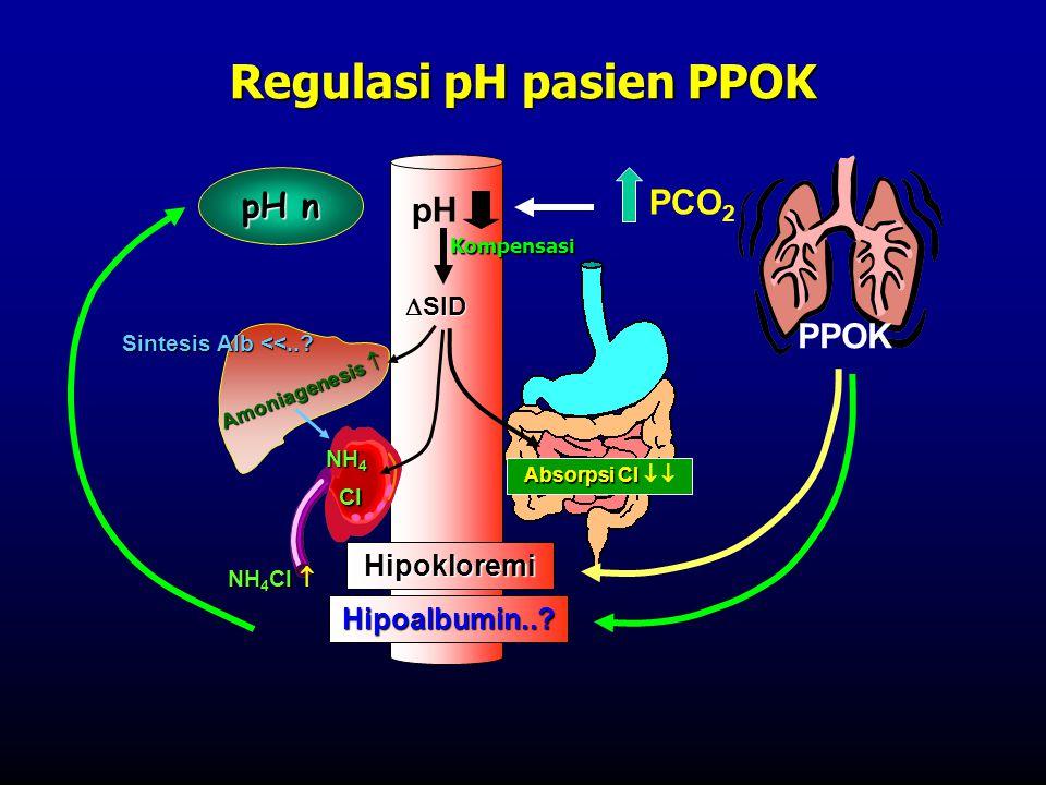 PCO 2 PPOK pH NH 4 Cl NH 4 Cl  Hipoalbumin..? Sintesis Alb <<..? Hipokloremi Absorpsi Cl Absorpsi Cl   Amoniagenesis   SID pH n Cl NH 4 Kompensas