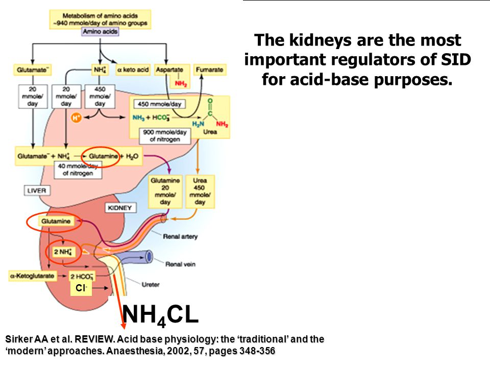NH 4 CL Cl - Sirker AA et al. REVIEW. Acid base physiology: the 'traditional' and the 'modern' approaches. Anaesthesia, 2002, 57, pages 348-356 The ki