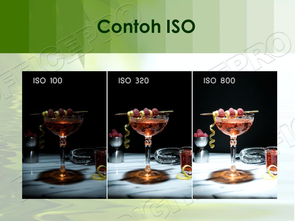 Contoh ISO