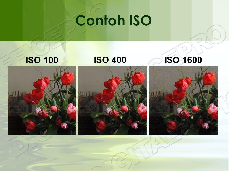 ISO 100 ISO 400ISO 1600