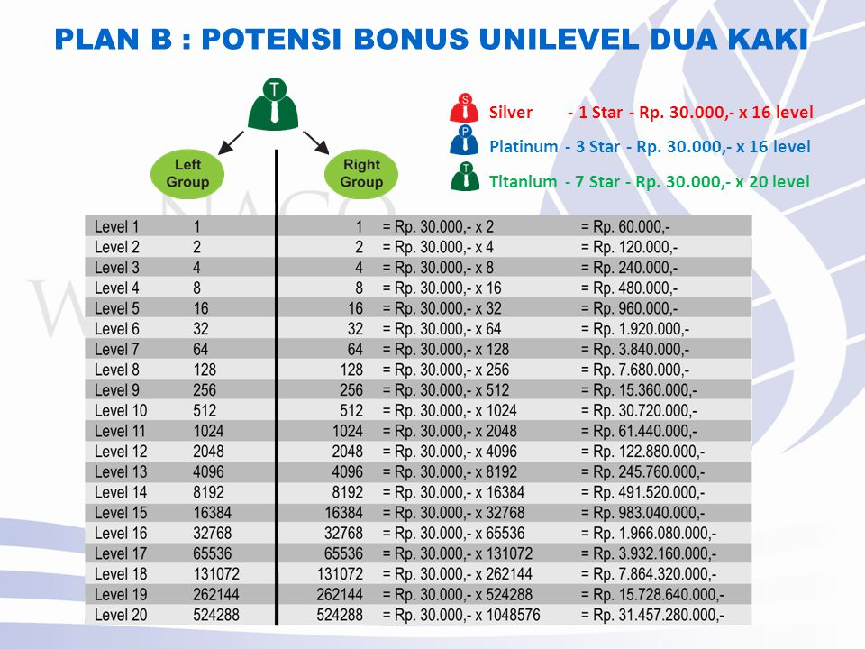 PLAN B : POTENSI BONUS UNILEVEL DUA KAKI Silver - 1 Star - Rp.