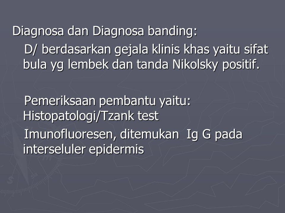 Diagnosa dan Diagnosa banding: D/ berdasarkan gejala klinis khas yaitu sifat bula yg lembek dan tanda Nikolsky positif.