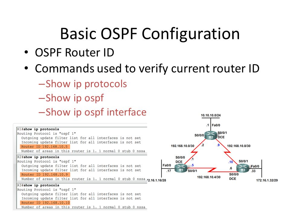 Basic OSPF Configuration • OSPF Router ID • Commands used to verify current router ID – Show ip protocols – Show ip ospf – Show ip ospf interface