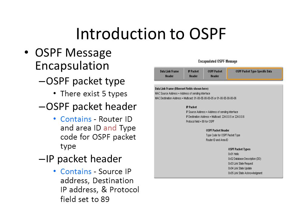 Basic OSPF Configuration • OSPF network command – Requires entering: • network address • wildcard mask - the inverse of the subnet mask • area-id - area-id refers to the OSPF area – OSPF area is a group of routers that share link state information – Example: Router(config- router)#network network-address wildcard-ask area area-id