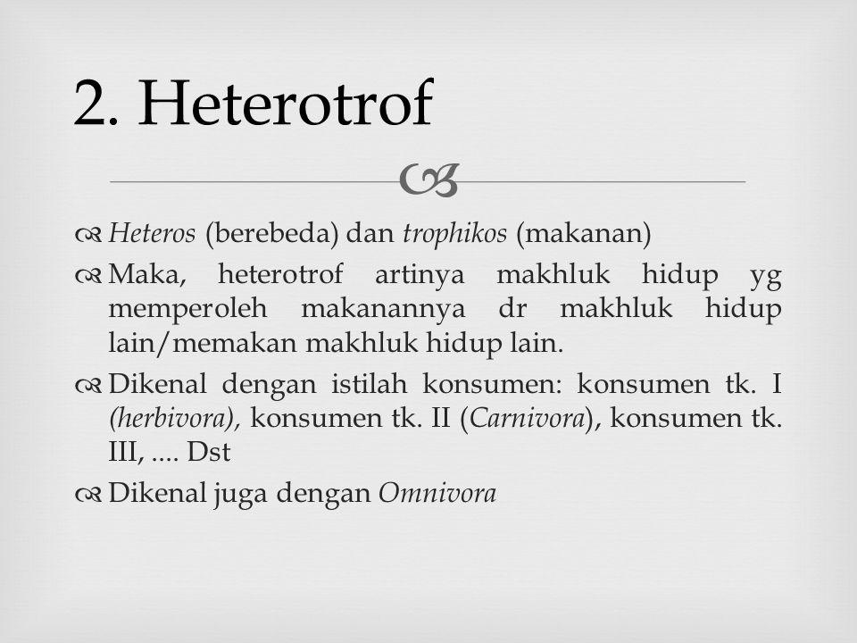   Heteros (berebeda) dan trophikos (makanan)  Maka, heterotrof artinya makhluk hidup yg memperoleh makanannya dr makhluk hidup lain/memakan makhluk