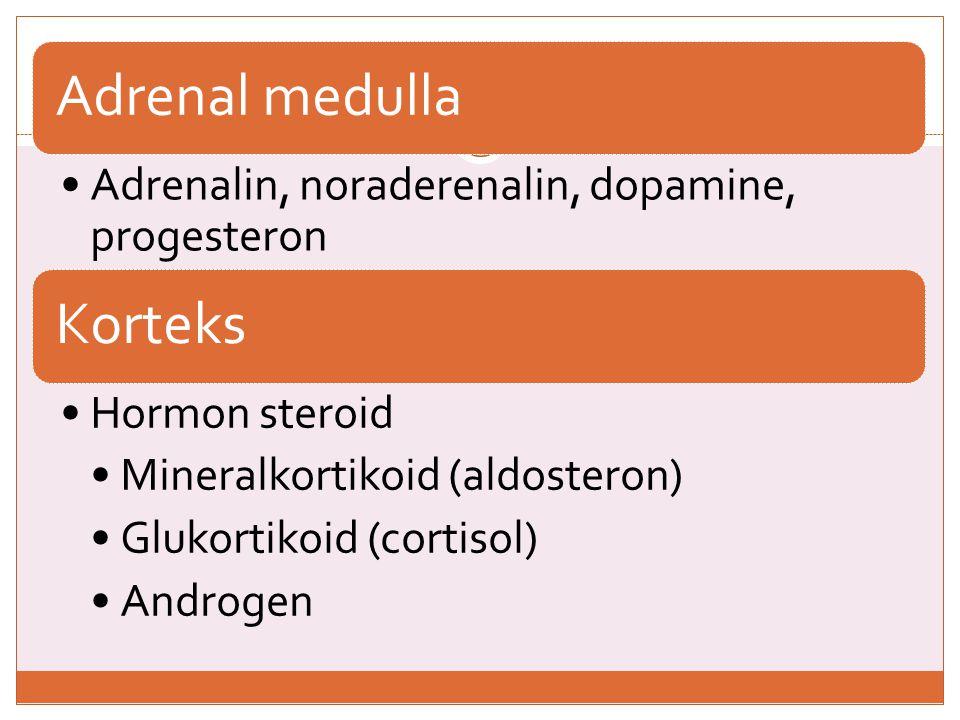 ADDISON DISEASE Hipoadrenokortisisme primer  defisiensi hormon glukokortikoid dan mineral kortikoid (o/korteks adrenal) e/ Penyakit autoimun, tuberkulosis adrenal, amiloidosis, neoplasia, histoplasmosis gejala •Hypoglychemia, hypotension, asthenia, kelemahan otot •Hiperpigmentasi pd kulit/mukosa, berwarna coklat/hitam, sering terjadi pd daerah yg mudah terkena trauma  ↑ hormon ACTH dan MSH