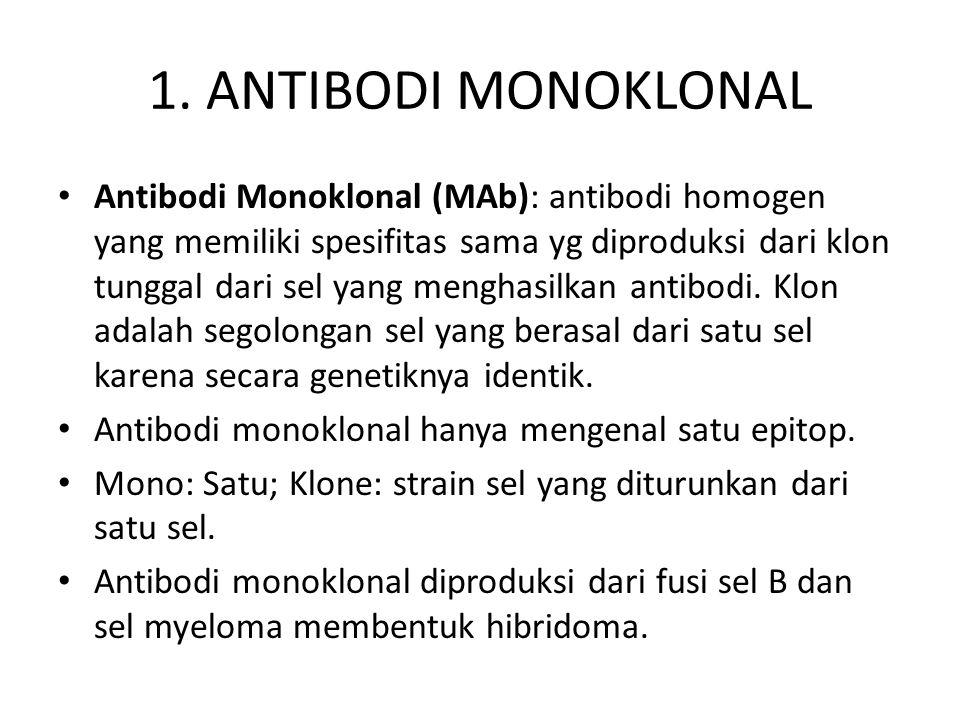 1. ANTIBODI MONOKLONAL • Antibodi Monoklonal (MAb): antibodi homogen yang memiliki spesifitas sama yg diproduksi dari klon tunggal dari sel yang mengh