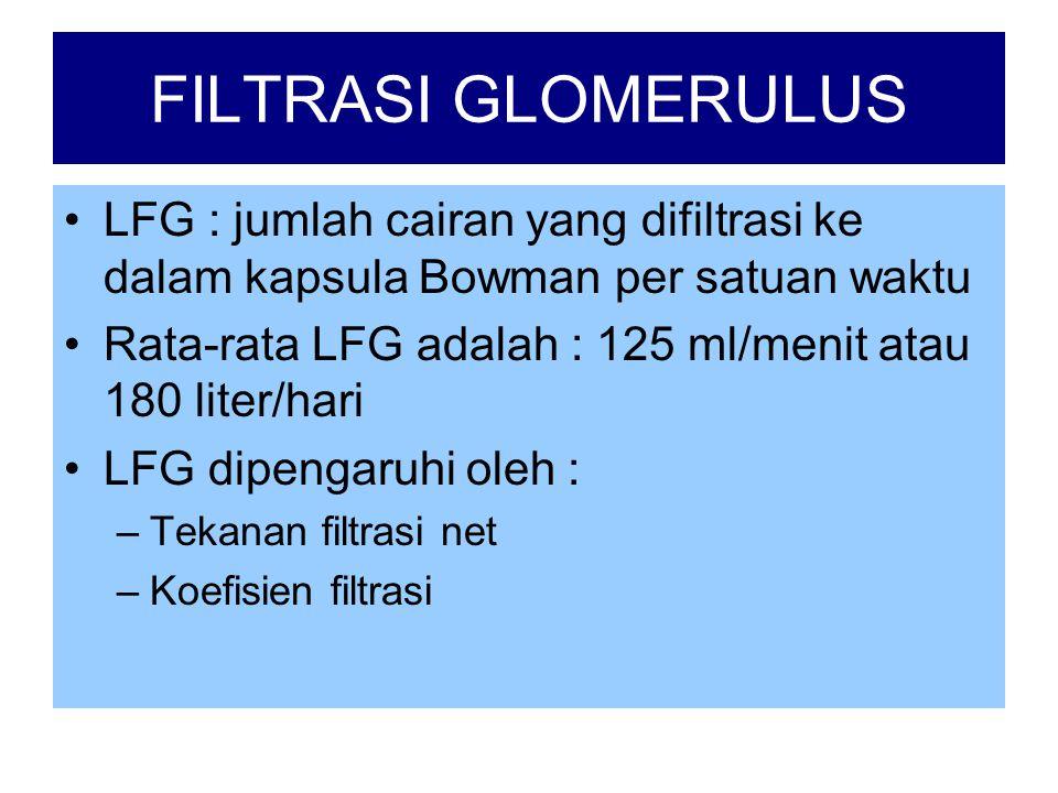 FILTRASI GLOMERULUS •LFG : jumlah cairan yang difiltrasi ke dalam kapsula Bowman per satuan waktu •Rata-rata LFG adalah : 125 ml/menit atau 180 liter/hari •LFG dipengaruhi oleh : –Tekanan filtrasi net –Koefisien filtrasi