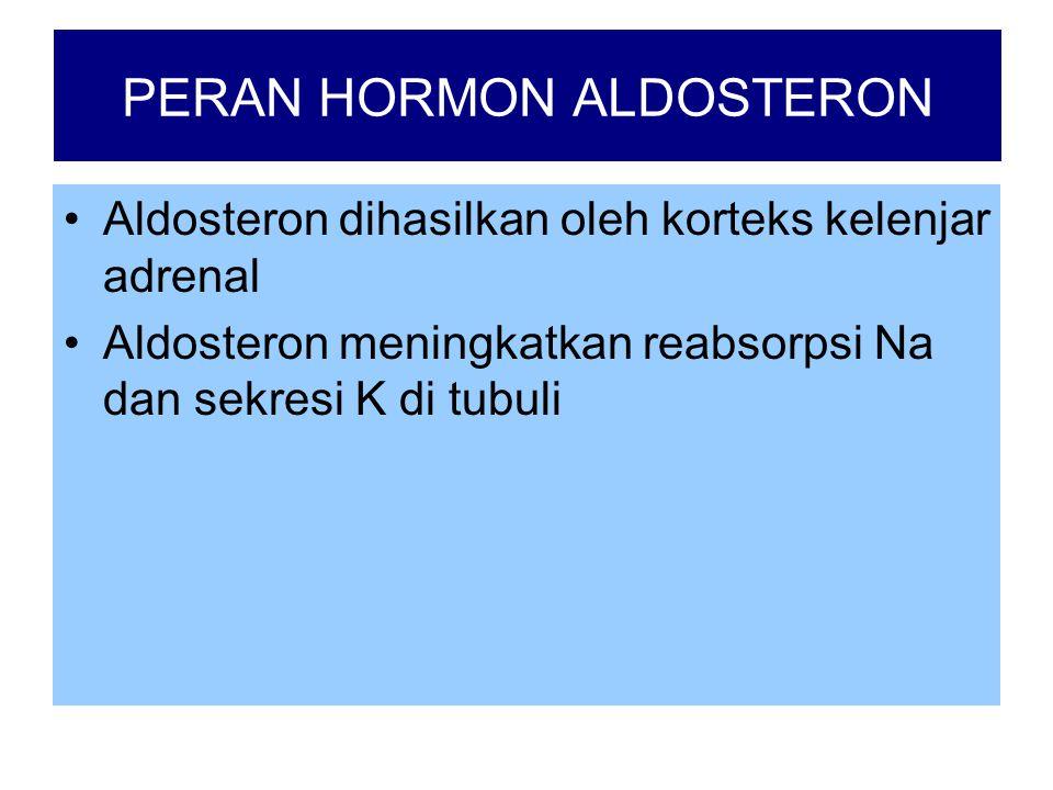 PERAN HORMON ALDOSTERON •Aldosteron dihasilkan oleh korteks kelenjar adrenal •Aldosteron meningkatkan reabsorpsi Na dan sekresi K di tubuli