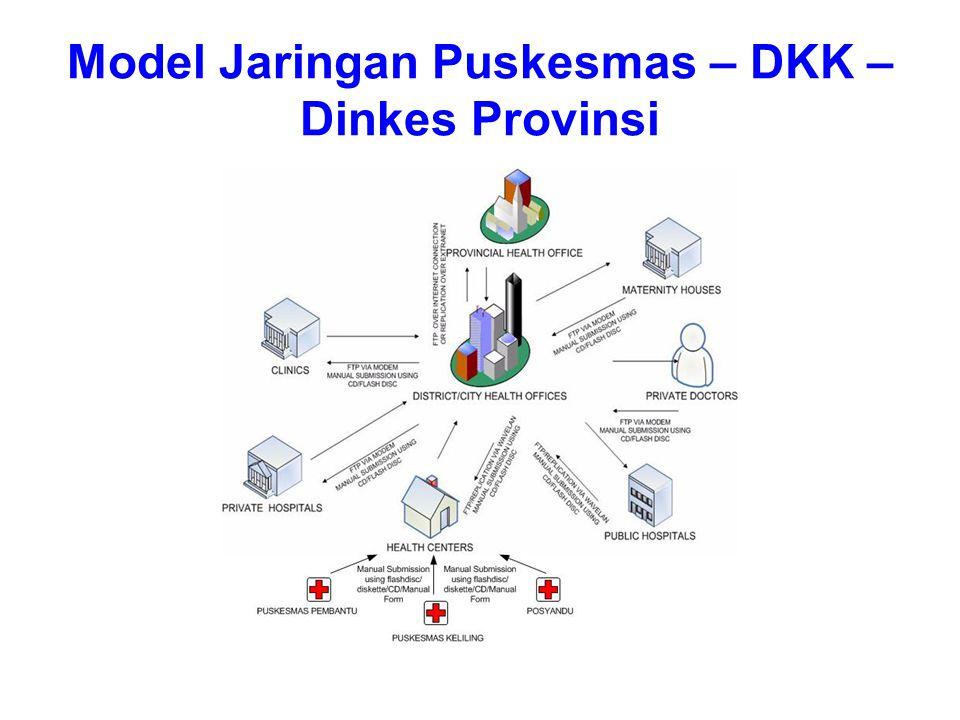 Model Jaringan Puskesmas – DKK – Dinkes Provinsi