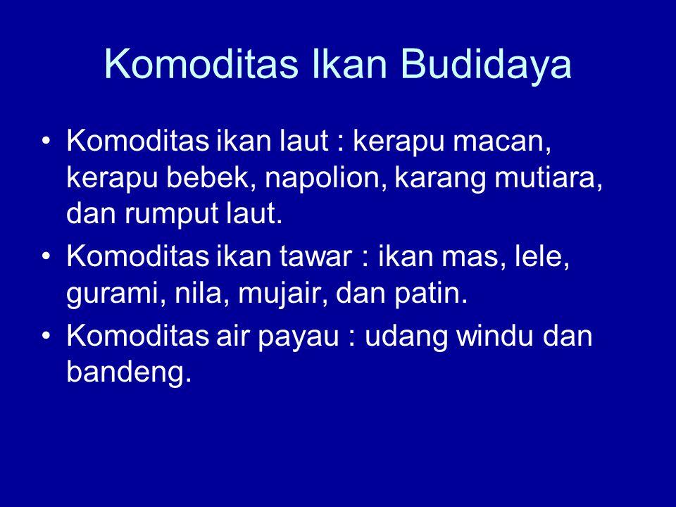 Komoditas Ikan Budidaya •Komoditas ikan laut : kerapu macan, kerapu bebek, napolion, karang mutiara, dan rumput laut. •Komoditas ikan tawar : ikan mas