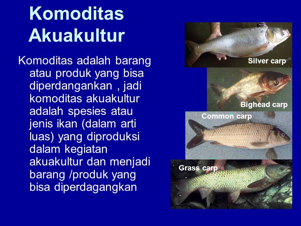 Komoditas Akuakultur Komoditas adalah barang atau produk yang bisa diperdangankan, jadi komoditas akuakultur adalah spesies atau jenis ikan (dalam art