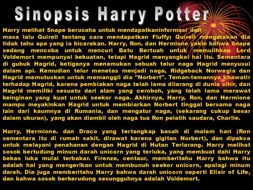 Harry, Hermione dan Ron menemukan Hagrid, ketika dia sedang mabuk di sebuah pub, telah mengatakan kepada orang asing yang berkerudung cara untuk melewati Fluffy, dan mereka percaya pencurian Batu sudah dekat.