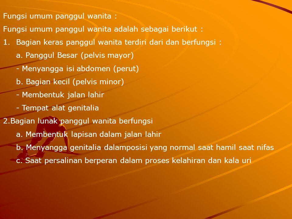 Fungsi umum panggul wanita : Fungsi umum panggul wanita adalah sebagai berikut : 1.Bagian keras panggul wanita terdiri dari dan berfungsi : a.