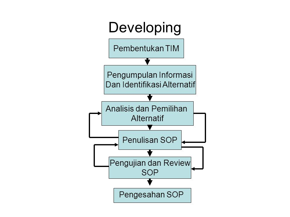 NEED ASSESMENT Peraturan Per UU Lingkungan Operasional Kebutuhan Organisasi SOP Apa yang dibutuhkan Mampukah SOP yang Ada memenuhi Penilaian Kebutuhan