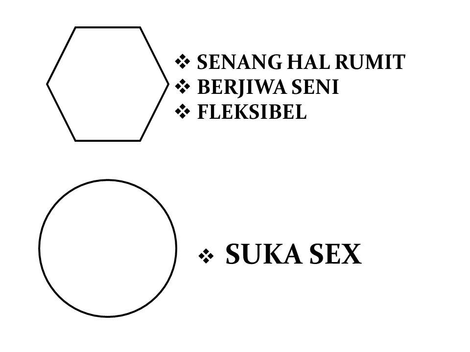  SENANG HAL RUMIT  BERJIWA SENI  FLEKSIBEL  SUKA SEX