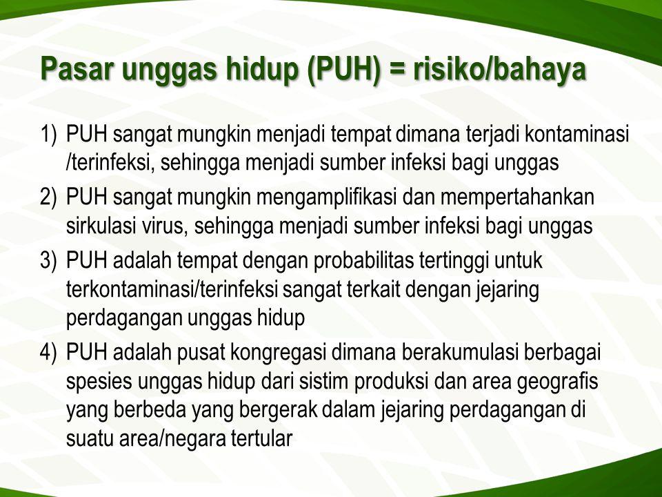 Pasar unggas hidup (PUH) = risiko/bahaya 1)PUH sangat mungkin menjadi tempat dimana terjadi kontaminasi /terinfeksi, sehingga menjadi sumber infeksi b