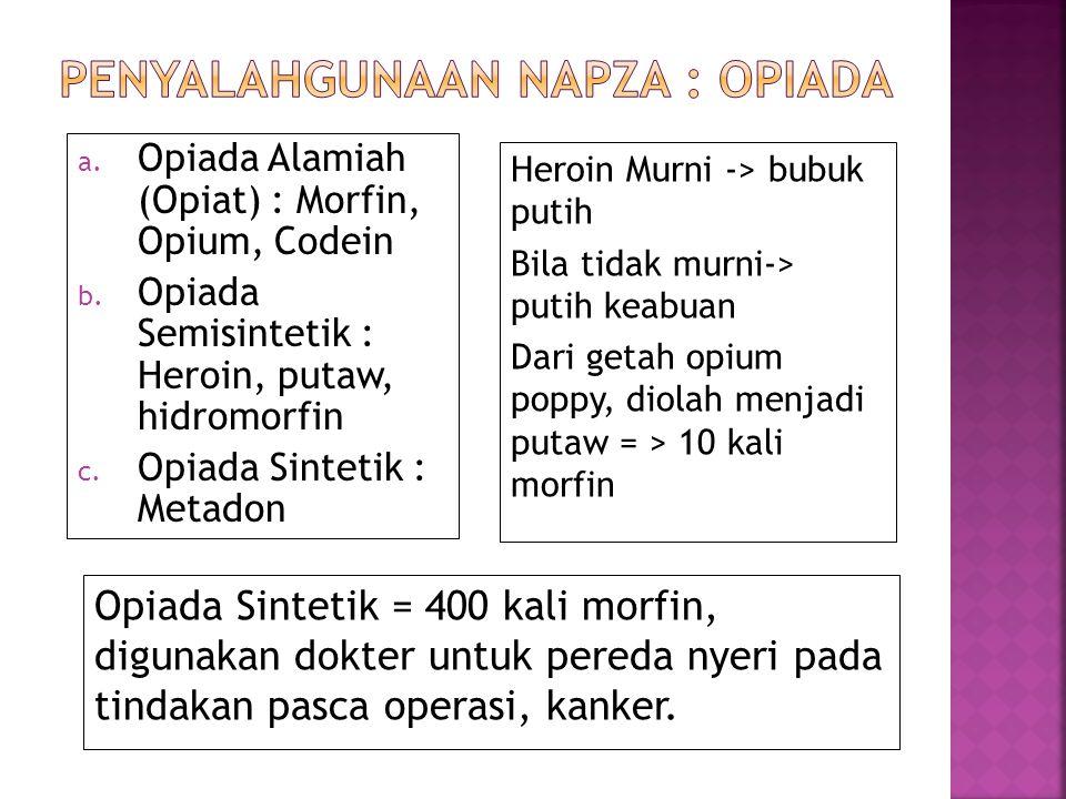  Penyalahgunaan adalah:  Penggunaan salah satu atau beberapa jenis NAPZA secara berkala atau teratur di luar indikasi medis, sehingga menimbulkan ga