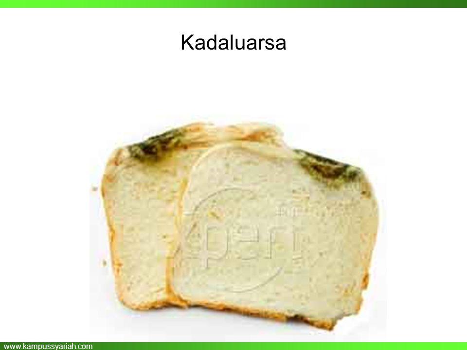 www.kampussyariah.com Kadaluarsa