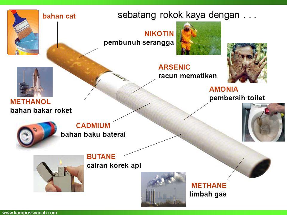 www.kampussyariah.com sebatang rokok kaya dengan... AMONIA pembersih toilet METHANE limbah gas BUTANE cairan korek api CADMIUM bahan baku baterai NIKO