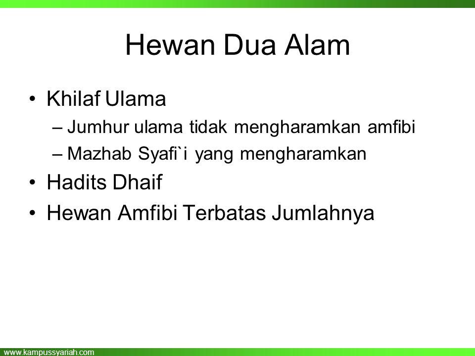 www.kampussyariah.com Hewan Dua Alam •Khilaf Ulama –Jumhur ulama tidak mengharamkan amfibi –Mazhab Syafi`i yang mengharamkan •Hadits Dhaif •Hewan Amfi