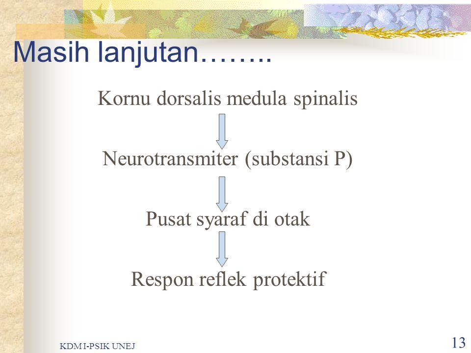 KDM I-PSIK UNEJ 12 Resepsi…….. Stimulus (mekanik, termal, kimia) Pengeluaran histamin, bradikinin, kalium Nosiseptor Impuls syaraf Serabut syaraf peri