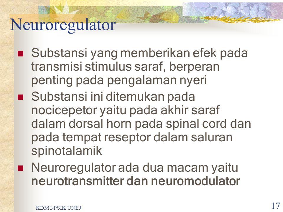 KDM I-PSIK UNEJ 16 Sambungan ….. Serabut saraf C  Tidak bermyelin  Diameternya sangat kecil  Lambat dalam menghantarkan impuls  Lokasinya jarang,
