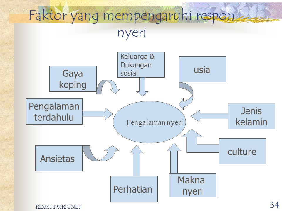 KDM I-PSIK UNEJ 33 Contoh referred pain……