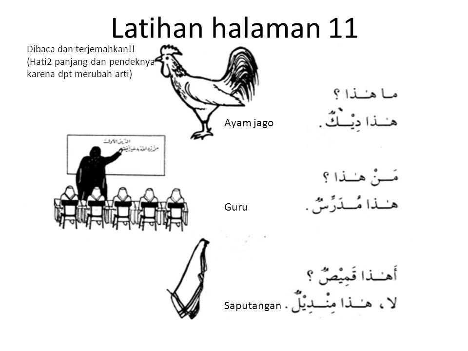 Latihan halaman 11 Ayam jago Guru Saputangan Dibaca dan terjemahkan!! (Hati2 panjang dan pendeknya karena dpt merubah arti)