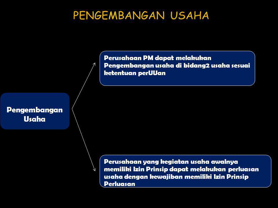 Pengembangan Usaha Perusahaan PM dapat melakukan Pengembangan usaha di bidang2 usaha sesuai ketentuan perUUan Perusahaan yang kegiatan usaha awalnya m
