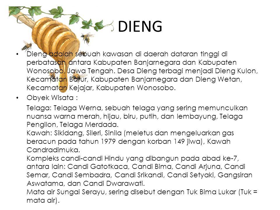 DIENG • Dieng adalah sebuah kawasan di daerah dataran tinggi di perbatasan antara Kabupaten Banjarnegara dan Kabupaten Wonosobo, Jawa Tengah. Desa Die