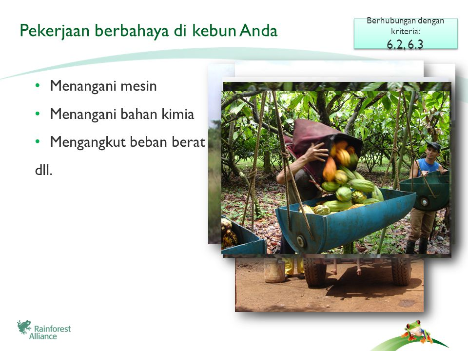 Pekerjaan berbahaya di kebun Anda • Menangani mesin • Menangani bahan kimia • Mengangkut beban berat dll. Berhubungan dengan kriteria: 6.2, 6.3 Berhub